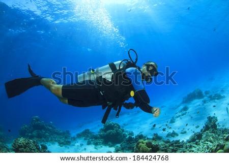 Scuba Diving in Sea - stock photo