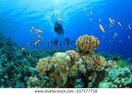 Scuba Diving on coral reef in the Red Sea - stock photo