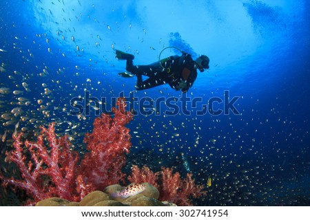 Scuba diving on coral reef underwater - stock photo