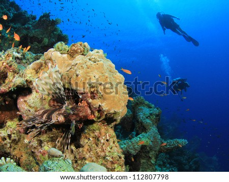 Scuba Diving on coral reef with fish - stock photo