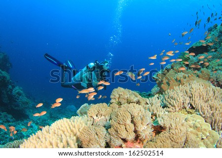 Scuba Diving on coral reef with tropical fish - stock photo