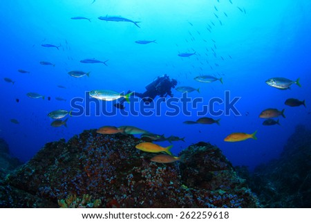 Scuba diving over coral reef with tropical fish - stock photo
