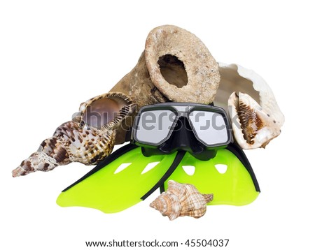 scuba diving setup consisting of: scuba diving mask, flippers, ancient amphora, and four different sea shells