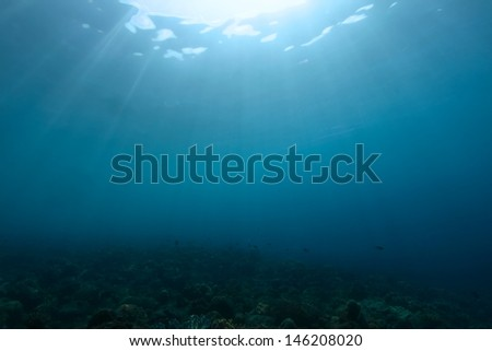 scuba diving shot of underwater sea with sun ray