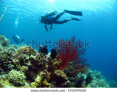 Scuba Diving with Crystal Clear Water and Beautiful Coral Reefs - stock photo