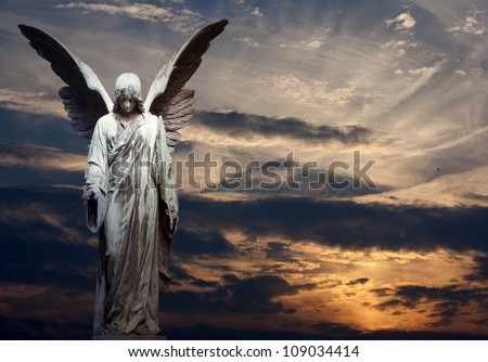 Sculpture of angel on cemetery in sunset background - stock photo