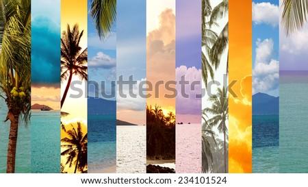 Sea and palm trees, collage, Koh Samui, Thailand - stock photo
