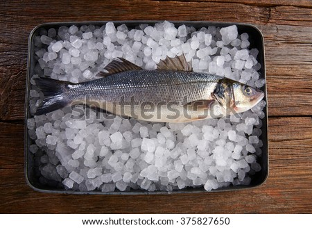 Sea bass fresh fish on ice tray and wooden table - stock photo