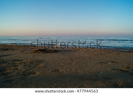 Sea, beach at sunset