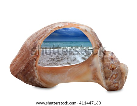 Sea beach in sun evening through broken rapana shell. Isolated on white background. - stock photo