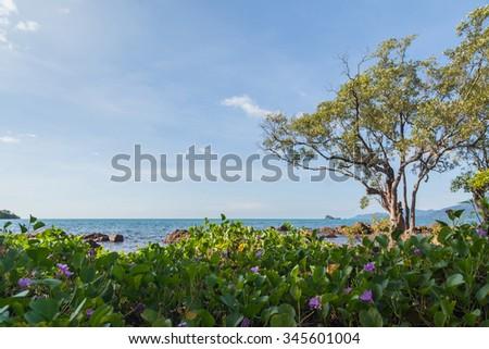 Sea beach in Thailand - stock photo