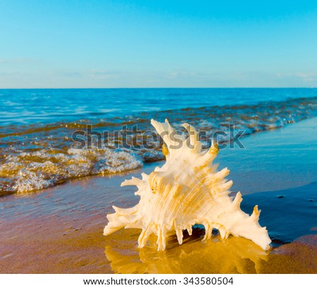 Sea Beach Outdoor  - stock photo