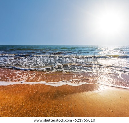 sea beach under a sparkle summer sun