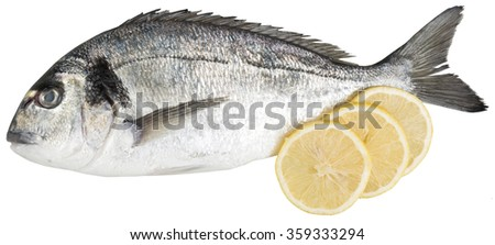 Sea bream profile with 3 slices of lemon. isolated on white. clipping path