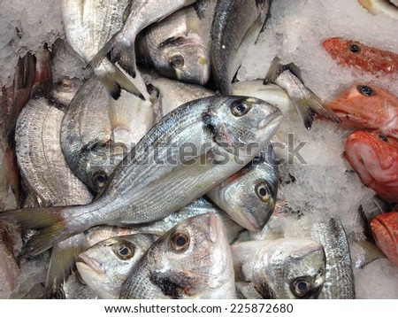 Sea Breams in Crushed Ice at the Fish Market - stock photo