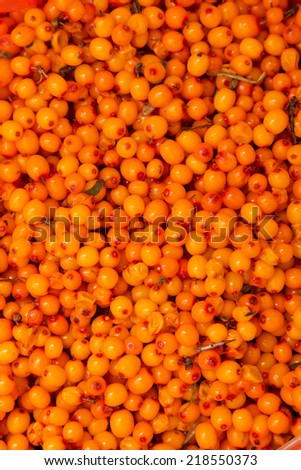 sea �¢??�¢??buckthorn berries as a background