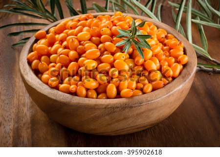 Sea buckthorn. Fresh ripe organic berries with leaves. - stock photo