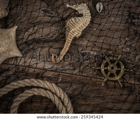 Sea concept on a wooden table background  - stock photo