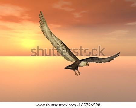 Sea Eagle at Sunset Computer generated 3D illustration - stock photo