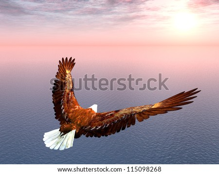Sea Eagle Computer generated 3D illustration - stock photo