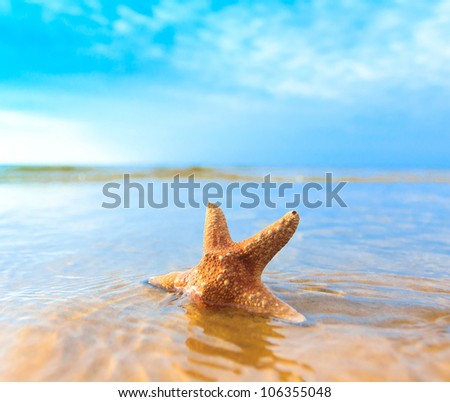 Sea Fish Beach - stock photo