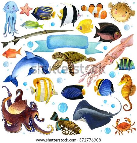 Sea Fish watercolor set.  unusual sea fauna. watercolor marine theme. underwater world set. watercolor illustration exotic Fish for children - stock photo