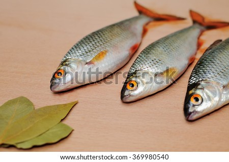 Sea food, are fresh the caught fish lies on a wooden surface. Fresh food. Fresh-water river fish. - stock photo