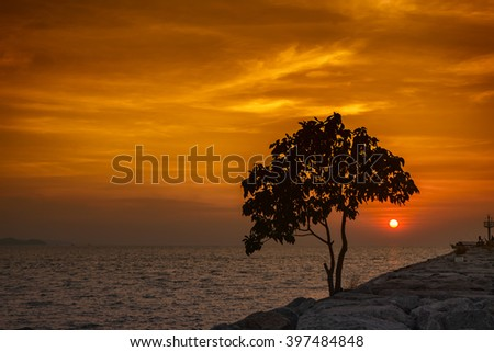 Sea in sunset with silhouette tree foreground, the Dark tree foreground with orange sky when sunset in sea side - stock photo