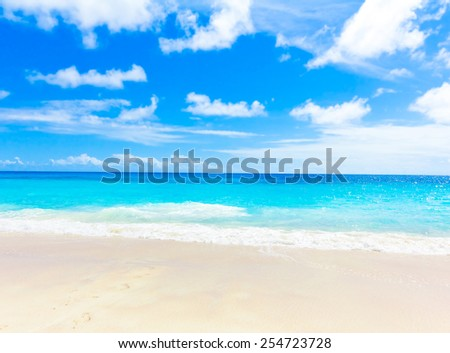 Sea Jungle Tranquility  - stock photo