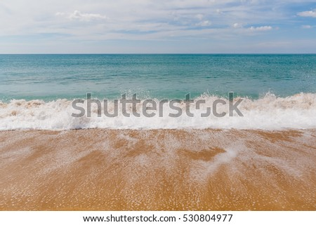 Sea landscape, the tropical beach, the running wave
