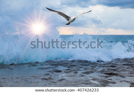 Sea landscape with a sunset and the cloudy sky
