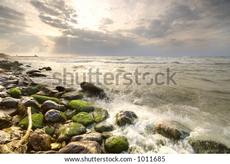 Sea landscape with green moss covered rocks and dramatic sky