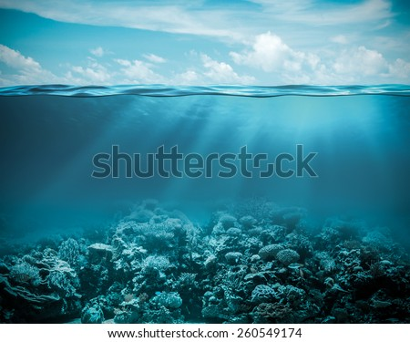 Sea or ocean underwater deep nature background - stock photo