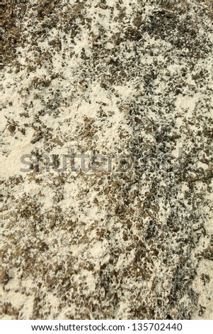 sea rock texture, sea rock texture with sand dust covering - stock photo
