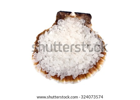 sea salt in a shell isolated on a white background - stock photo