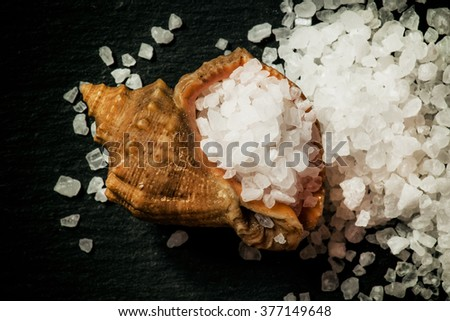 Sea salt in a shell on a dark stone background, top view