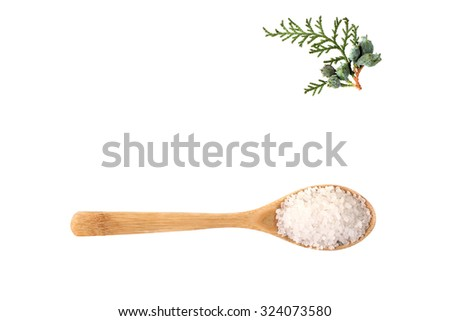 sea salt on wooden spoon with green twig isolated on white background - stock photo