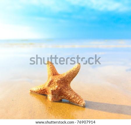 Sea Sand Fish - stock photo