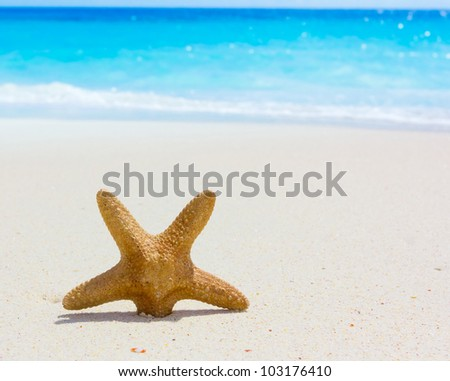 Sea Sand Scene - stock photo