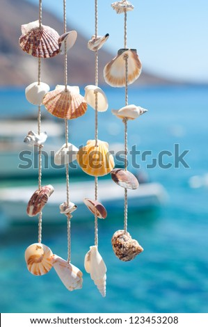 sea shell decoration - stock photo