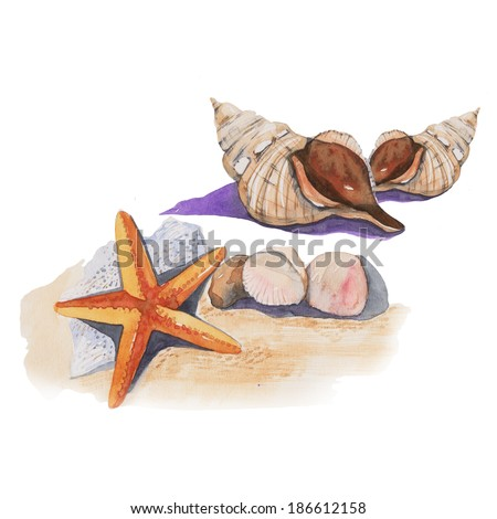 Sea shell on the beach, watercolor painting - stock photo