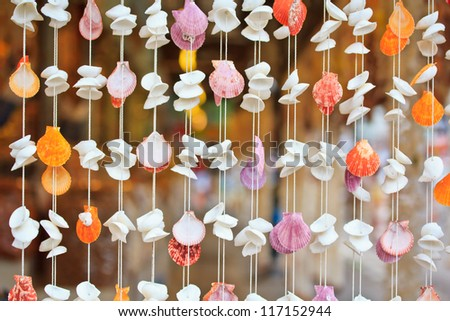 Sea shell product  background - stock photo