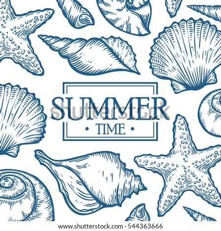 sea shell summer time marine hand drawn template packaging food drink menu label