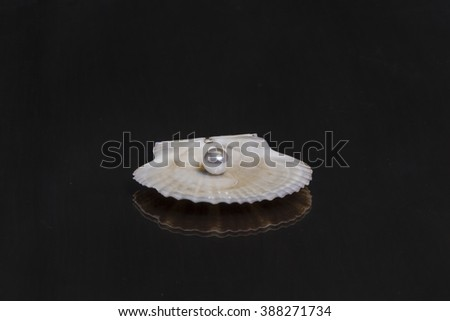 Sea shell with a pearl on the mirror wooden table - stock photo