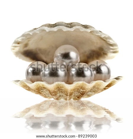 sea shell with pearls on white background - stock photo