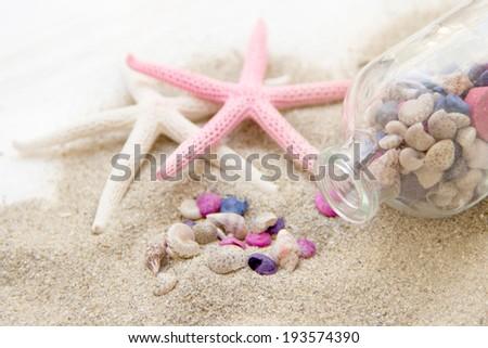 Sea shells and starfish on sand - stock photo