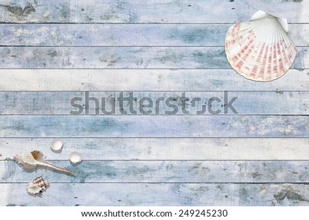 sea shells on wooden panels, summer background - stock photo