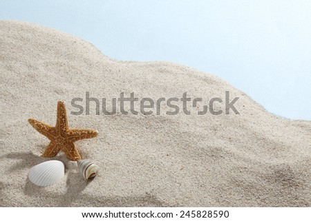 sea shells with sand as background? - stock photo
