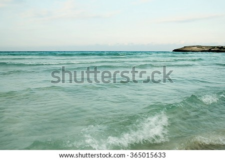 Sea shore background