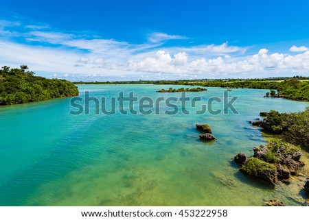 Sea, shore, estuary, mangrove, landscape. Okinawa, Japan, Asia.